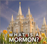 Picture of Salt Lake Mormon Temple