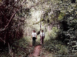 missionaries in veracruz mexico forest